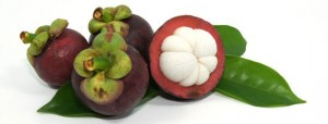Garcinia-Cambogia-Fruit-Extract